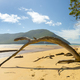Panorama Of Sealers Cove - PhotoDune Item for Sale