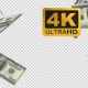 Falling Money - VideoHive Item for Sale
