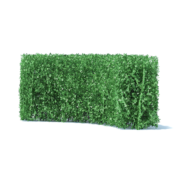 Curved Hedge - 3DOcean Item for Sale