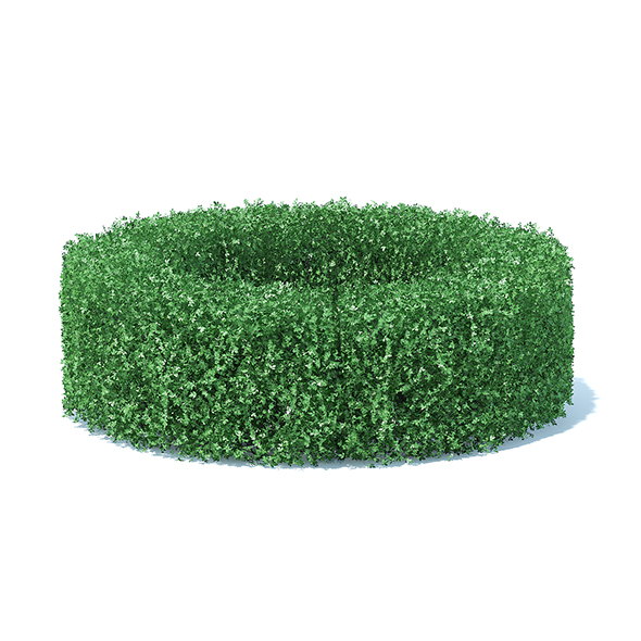 Circle Shaped Hedge - 3DOcean Item for Sale