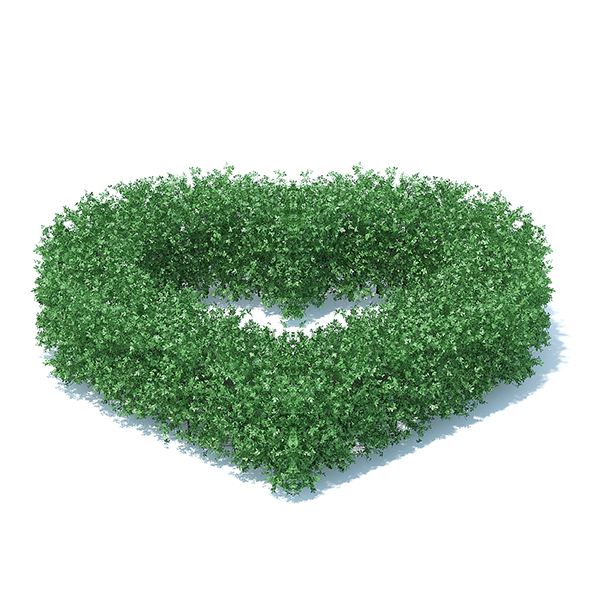 Heart Shaped Hedge - 3DOcean Item for Sale