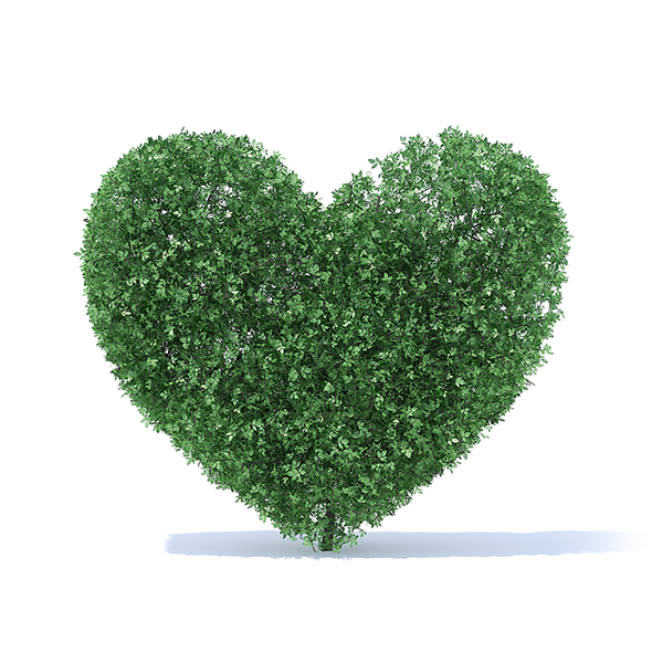 Heart Shaped Shrub - 3DOcean Item for Sale