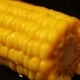 Corn - VideoHive Item for Sale