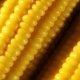 Corn Rotation - VideoHive Item for Sale