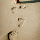 Footprints In The Sand - PhotoDune Item for Sale