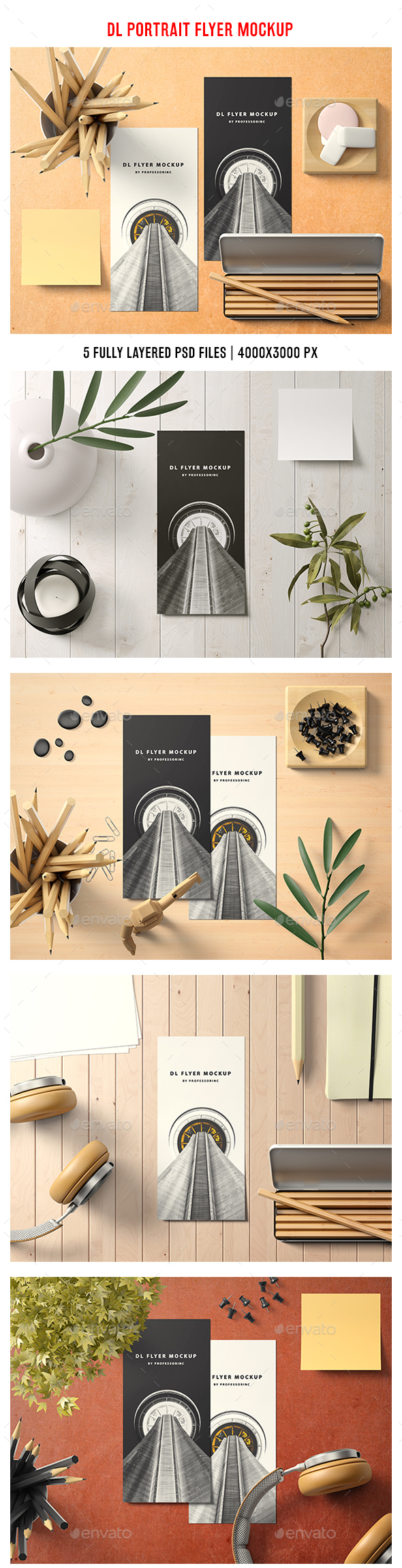 GraphicRiver Portrait DL Flyer Mockup 20941951