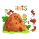 Anthill and Ants - GraphicRiver Item for Sale