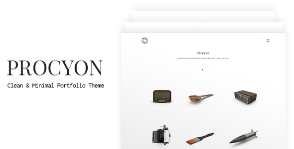 Image of Procyon - True Minemalistic Portfolio Theme