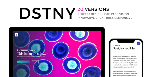 Download DSTNY - Revolutionary Coming Soon Template            nulled nulled version