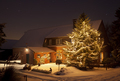 Winter House With Tall Christmas Tree At Night