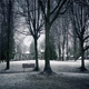Moving Through Park With Snow Falling - VideoHive Item for Sale