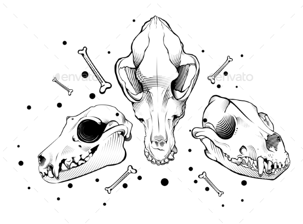 Vector Dog Skull Engraving Style - Animals Characters