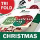 Christmas 2017 Trifold Brochure