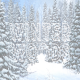Winter Wood - VideoHive Item for Sale