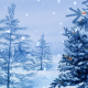Winter Snowfall 01 - VideoHive Item for Sale