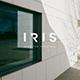 Iris Minimal Google Slide Template