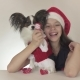 Beautiful Teen Girl and Dog Continental Toy Spaniel Papillon in Santa Claus Costumes Waving a Paw - VideoHive Item for Sale