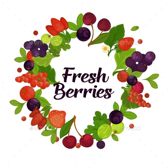 Fresh Organic Berries with Leaves in Circle - Food Objects