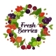 Fresh Organic Berries with Leaves in Circle