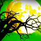 Halloween 13 - VideoHive Item for Sale