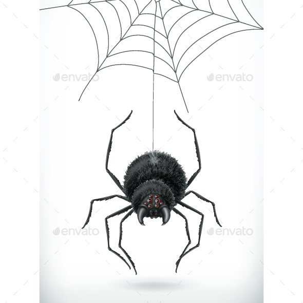 GraphicRiver Spider 3D Vector 20948735