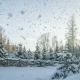 Falling Snow in the Winter Forest - VideoHive Item for Sale