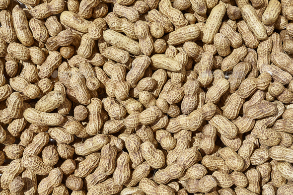 Sun drying peanuts, natural food background or pattern - Stock Photo - Images