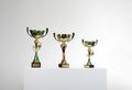 Golden cups of the winner