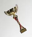 Golden cup of the winner