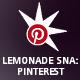 Lemonade Social Networks Autoposter: Pinterest PRO