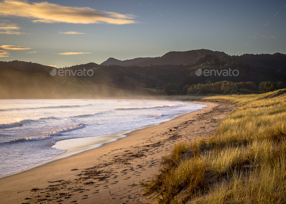 Ocean waves on the beach at Waikawau Bay New Zealand - Stock Photo - Images