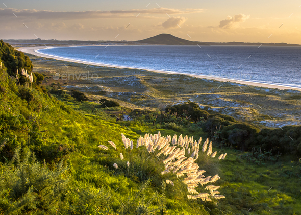 Sunset over Doubtless bay and Rangiputa volcano - Stock Photo - Images