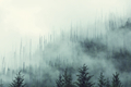 Fog in the forest - PhotoDune Item for Sale