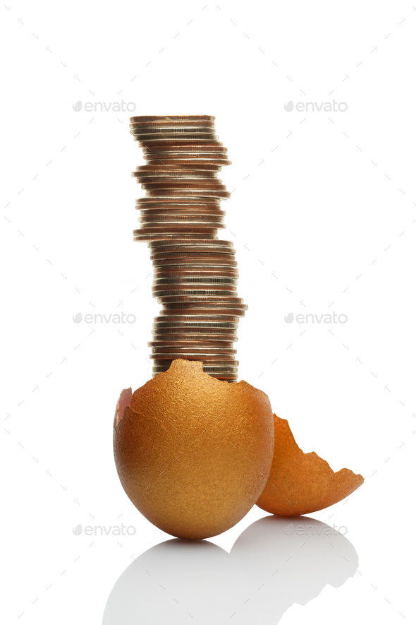 The nowadays golden goose. - Stock Photo - Images