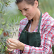 cute girl working in a tree nursery - PhotoDune Item for Sale