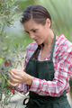 cute girl working in a tree nursery - PhotoDune Item for Sale