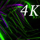 Glowing Cube 4k 03 - VideoHive Item for Sale
