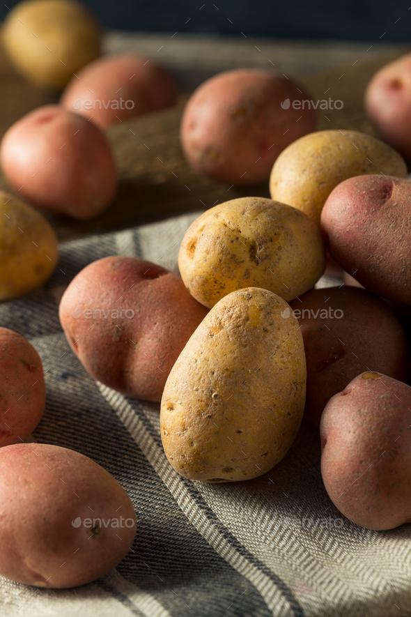 Raw Organic Mixed Baby Potatoes - Stock Photo - Images