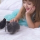 Pretty Teen Girl Having Fun, Hugging and Playing with Decorative Rabbit - VideoHive Item for Sale