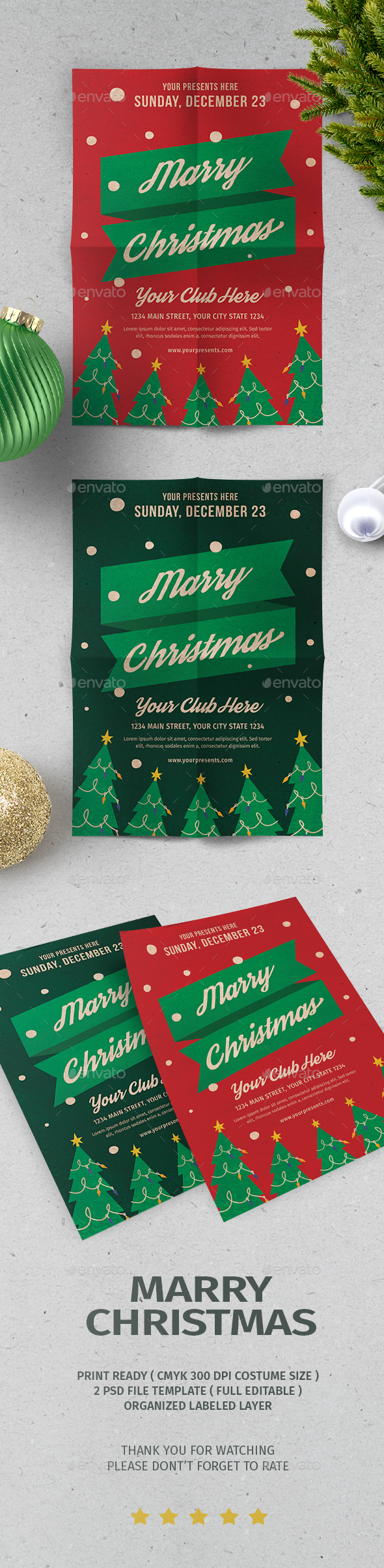 GraphicRiver Christmas Flyer Vol.5 20962487
