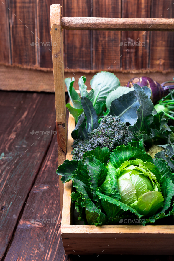 Variety of cabbages in wooden basket on brown background. Harvest. Close up. - Stock Photo - Images