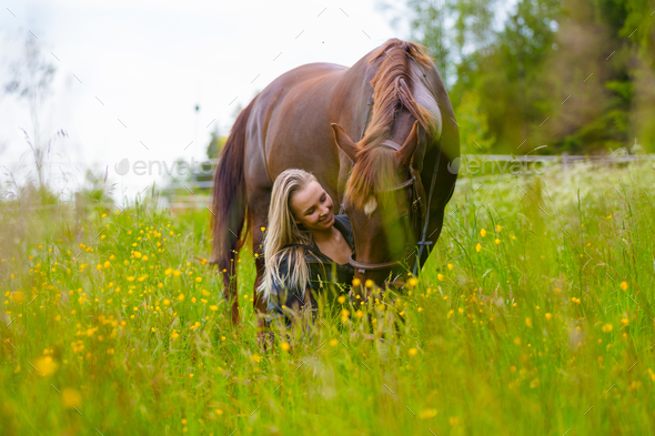 Beautiful woman feeding her arabian horse in the field - Stock Photo - Images