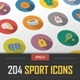 204 Sport Icons - GraphicRiver Item for Sale