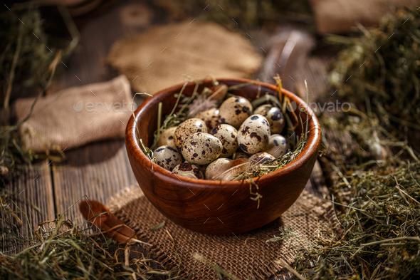 Studio shot of quail eggs - Stock Photo - Images