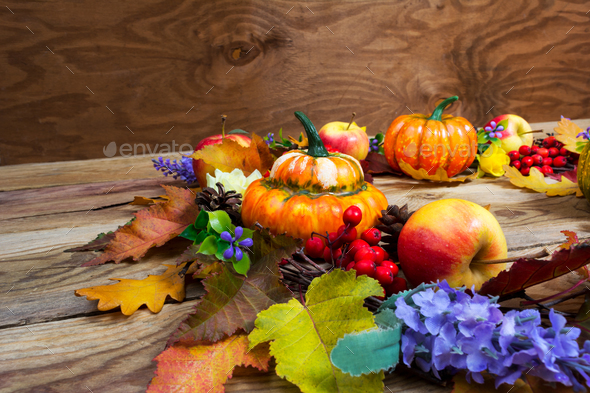 Thanksgiving background with leaves, ripe orange pumpkins, lilac - Stock Photo - Images