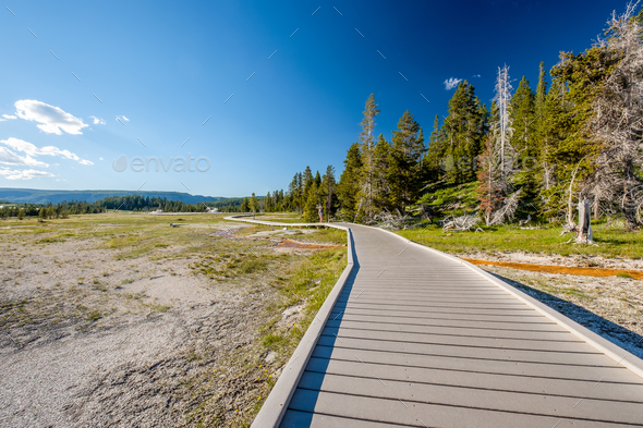 Tourist with backpack hiking in Yellowstone - Stock Photo - Images