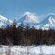 Panoramic Wintry Volcano Landscape and Scenery Winter Forest on Kamchatka Peninsula - PhotoDune Item for Sale