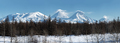 Panoramic Wintry Volcano Landscape and Scenery Winter Forest on Kamchatka Peninsula