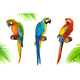 Parrots - GraphicRiver Item for Sale