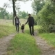 Happy Family Walks with Their Little Child on the Nature - VideoHive Item for Sale